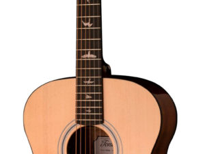 Prs guitars SE TX20E