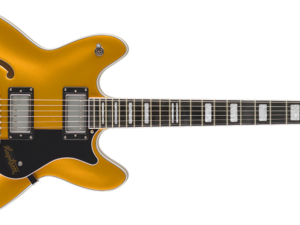 Hagstrom VIKING GOLD JUSTIN YORK